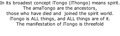 In its broadest concept iTongo (iThongo) means spirit. The amaTongo are the ancestors,  those who have died and  joined the spirit world. iTongo is ALL things, and ALL things are of it.   The manifestation of iTongo is threefold